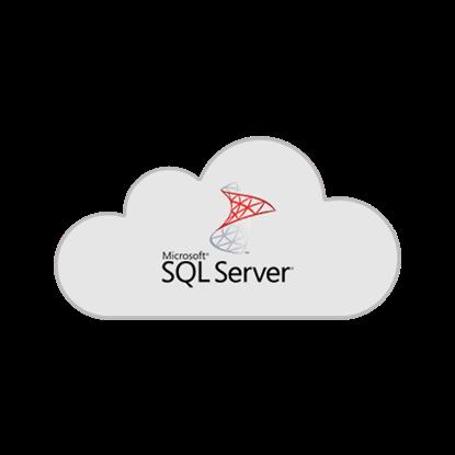 Slika MS SQL Standard per user (SAL)